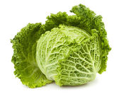 Cabbage one — Stock Photo