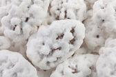 Almond sugar sweets — Stock Photo