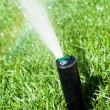 Sprinkler grass automatic watering — 图库照片