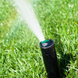 Sprinkler grass automatic watering — Stock Photo #44032293