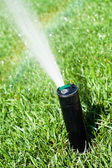 Sprinkler grass automatic watering — Stock Photo