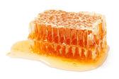 Honeycomb chunk — Stock Photo