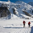 Two ski in the swiss alps — Stock Photo