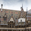 Hospices de dieu in burgundy — Stock Photo #13580424