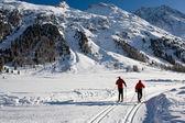 Twee ski in de zwitserse alpen — Stockfoto