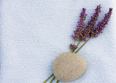 Calm spa concept with lavender — Stock Photo