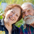 Old happy loving couple — Stock Photo #14911737