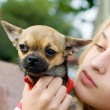 Blonde girl holding pet dog — Stock Photo #25454075