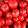 Harvested tomatoes — Stock Photo