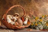 Martwa natura z koszem grzybów — Zdjęcie stockowe