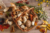 Still life. Flowers, mushrooms — Stock Photo