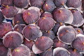 Ripe plums — Stock Photo