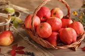 Korb mit roten äpfeln — Stockfoto