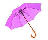 Lilac umbrella — Stok fotoğraf