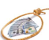Money fan in a noose — Stock Photo