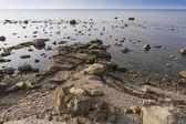 Baltic sea landscape. — Stock Photo