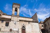 大教堂的圣 giovenale。纳尔尼。翁布里亚。意大利. — 图库照片