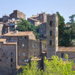 Panoramic view of Ronciglione. Lazio. Italy. — ストック写真