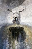 Storica fontana. caprarola. lazio. italia. — Foto Stock