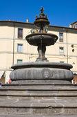 Fuente monumental. ronciglione. lazio. italia. — Foto de Stock