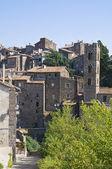 Ronciglione 的全景视图。拉齐奥。意大利. — 图库照片