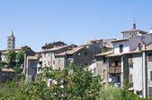 Vue panoramique de viterbe. lazio. italie. — Photo