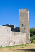 Fortified walls. Viterbo. Lazio. Italy. — Photo