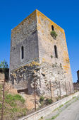 Medieval tower. Tuscania. Lazio. Italy. — Photo