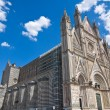Cathedral of Orvieto. Umbria. Italy. — Stock fotografie
