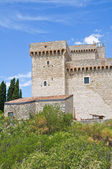 Albornoz fortress. Narni. Umbria. Italy. — Stock Photo