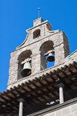 Basílica de san flaviano. montefiascone. lazio. italia. — Foto de Stock