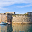 Angevine-Aragonese Castle. Gallipoli. Puglia. Italy. — Stock Photo #15884493