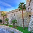 Angevine-Aragonese Castle. Gallipoli. Puglia. Italy. — Stock Photo #16096145