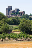 Castle of Torre Alfina. Lazio. Italy. — Stock Photo