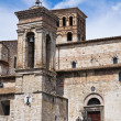 Cathedral of St. Giovenale. Narni. Umbria. Italy. — Stock Photo #17031289