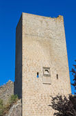 Fortified walls. Viterbo. Lazio. Italy. — 图库照片