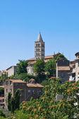 Panoramic view of Viterbo. Lazio. Italy. — Стоковое фото