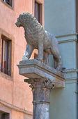 Gebouw van het stadhuis. viterbo. lazio. italië. — Stockfoto
