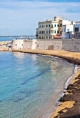Vista panoramica di gallipoli. puglia. italia. — Foto Stock