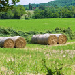Stock Photo: Hay bale field.
