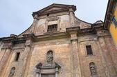Iglesia del carmine. piacenza. emilia-romaña. italia. — Foto de Stock