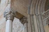 Cathedral of Piacenza. Emilia-Romagna. Italy. — Foto de Stock