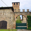 Castle of Vigolzone. Emilia-Romagna. Italy. — Foto Stock