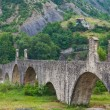 Hunchback bridge. Bobbio. Emilia-Romagna. Italy. — Stock Photo #20233127
