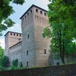 Castle of Castelguelfo. Noceto. Emilia-Romagna. Italy. - Stock Photo