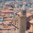 Royalty-Free Stock Photo: Panoramic view of Bologna. Emilia-Romagna. Italy.