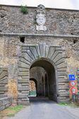 ポルタ ・ ロマーナ。nepi。ラツィオ州。イタリア. — ストック写真
