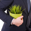 Businessman holding potted plant. — Stock Photo