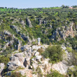 Ravine of Castellaneta. Puglia. Italy. — Stock Photo #24129221