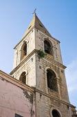 Church of St. Giovanni. Venosa. Basilicata. Italy. — Stock Photo